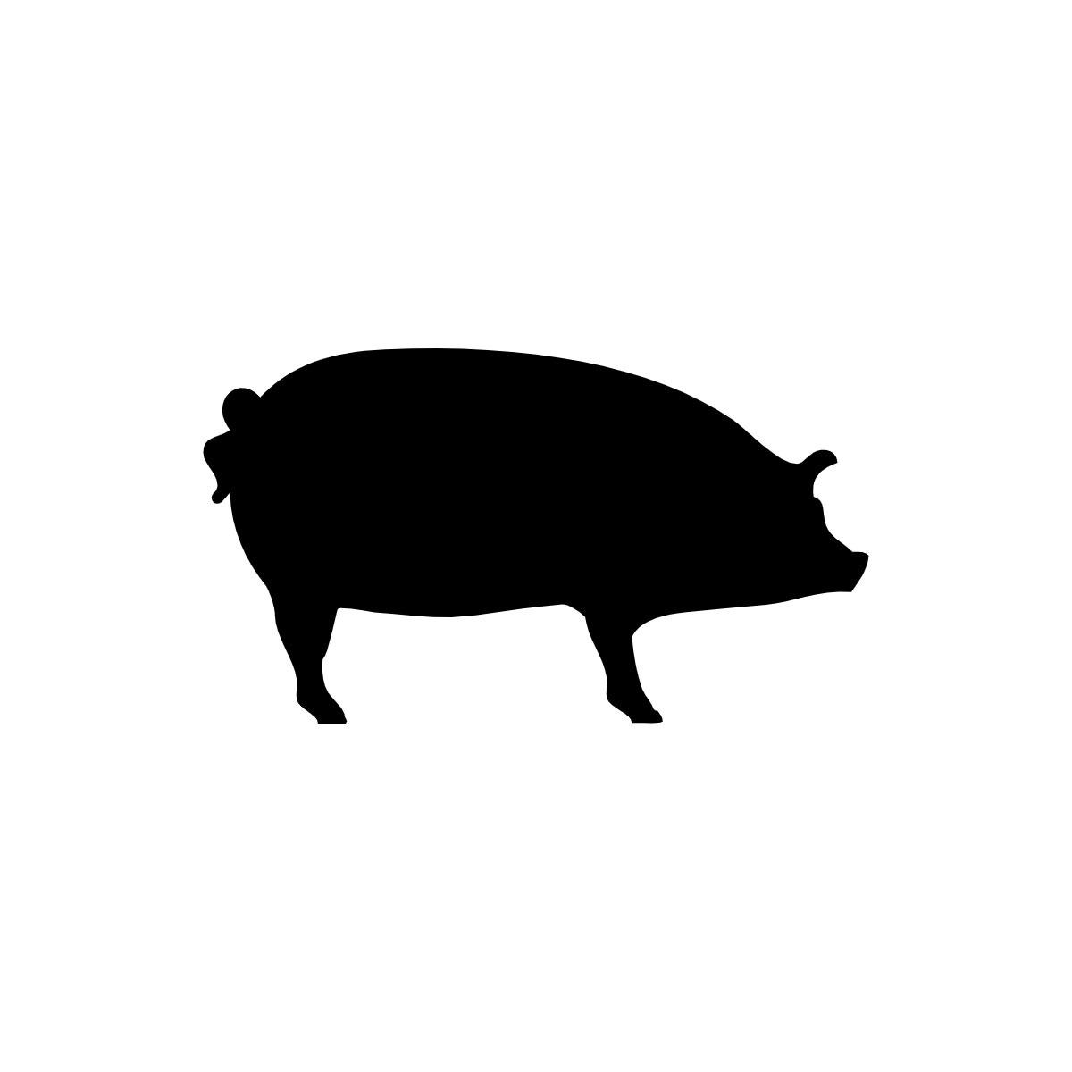 ground driven manure spreader pig manure spreader